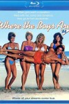 Where the Boys Are (1984) - Blu-ray Review