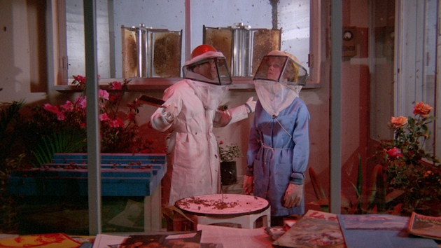 The Bees (1978) - Blu-ray Review