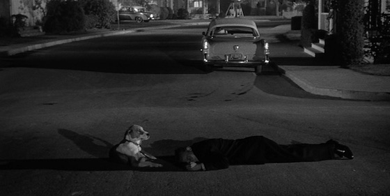 Film Noir: The Dark Side of Cinema, Volume II: The Price of Fear (1956)